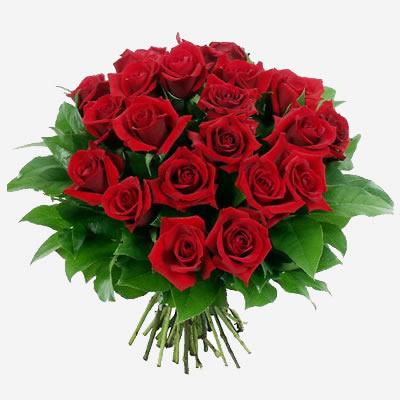 Stupiscila con un bouquet di fiori consegnato in albergo a Senigallia - hotel...